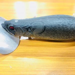 釣具の紹介と釣果の報告♪