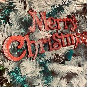 棚卸業務に伴う営業時間変更のお知らせとクリスマスコーナー紹介
