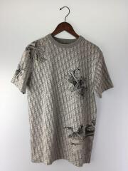 20SS/DANIEL ARSHAM/Tシャツ/XS/ポリエステル/シルバー/総柄