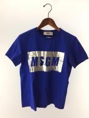 Tシャツ/S/コットン/BLU/2241MDM195