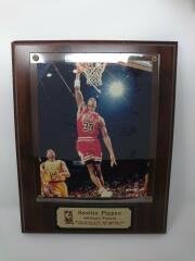 スコッティ・ピッペン/scottie pippen フォトフレーム NBA