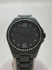 腕時計/アナログ/ステンレス/BLK/BLK
