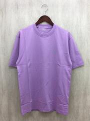 20AW/PALACE ARC'TERYX T-SHIRT HAZE/Tシャツ/M/コットン/PUP